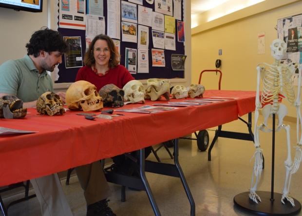 Bones Display 2